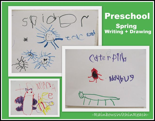 Fine Motor   Fine Arts: Insects!!
