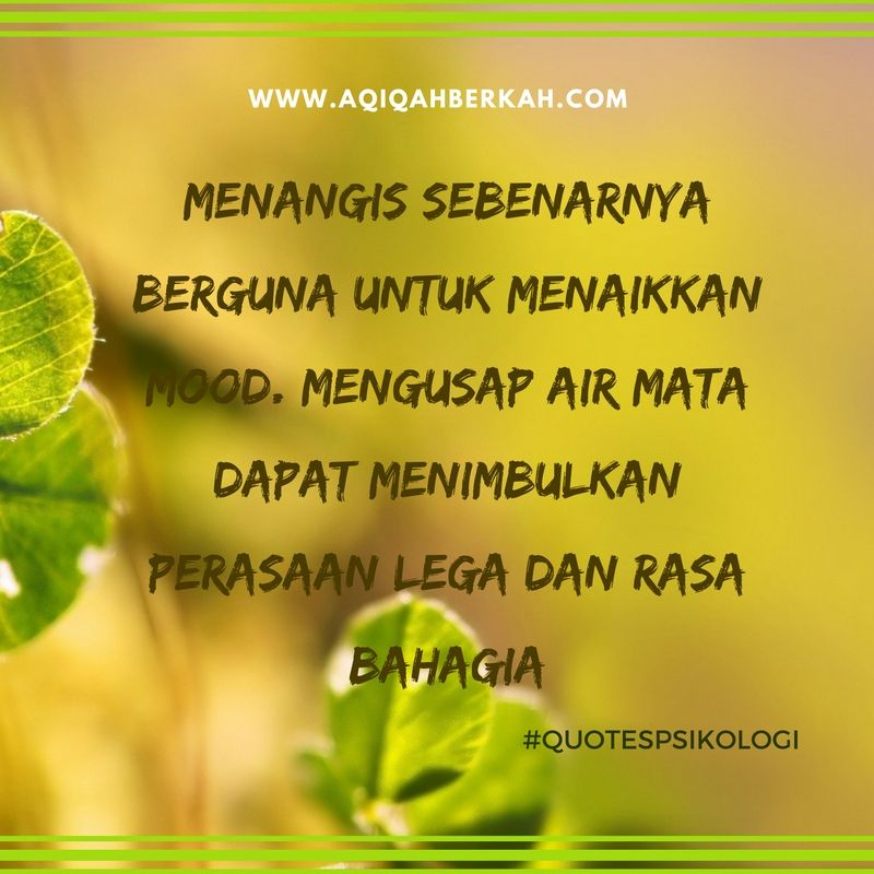 quotes pin bb cbce quotes herbs