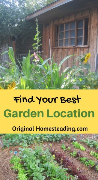 Your garden location is super important. Here are several ideas that you need to take into consideration when choosing the best spot for a garden. Consider the amount of daily sunshine, the water source, soil quality plus fencing, layout and more. Happy Growing! originalhomesteading.com #gardenforbeginners #gardenlocation #vegetablegarden #backyardgardenideas #creativegardenideas