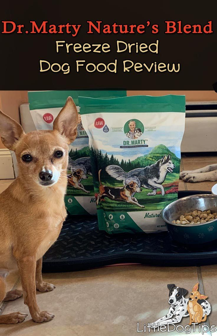 Dr marty natures blend freeze dried food review freeze