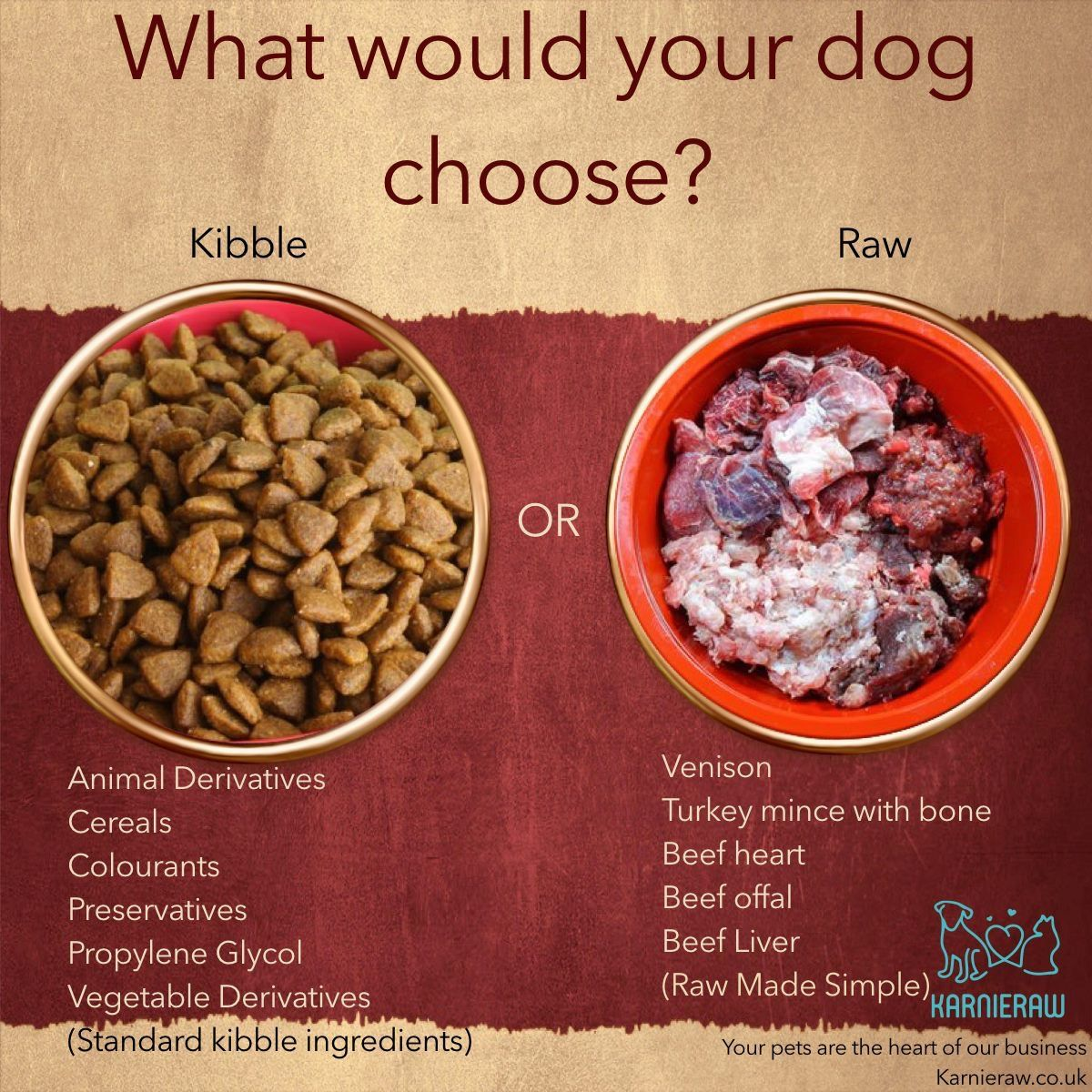 Kyra At Karineraw Will Always Choose Raw What Would Your Dog