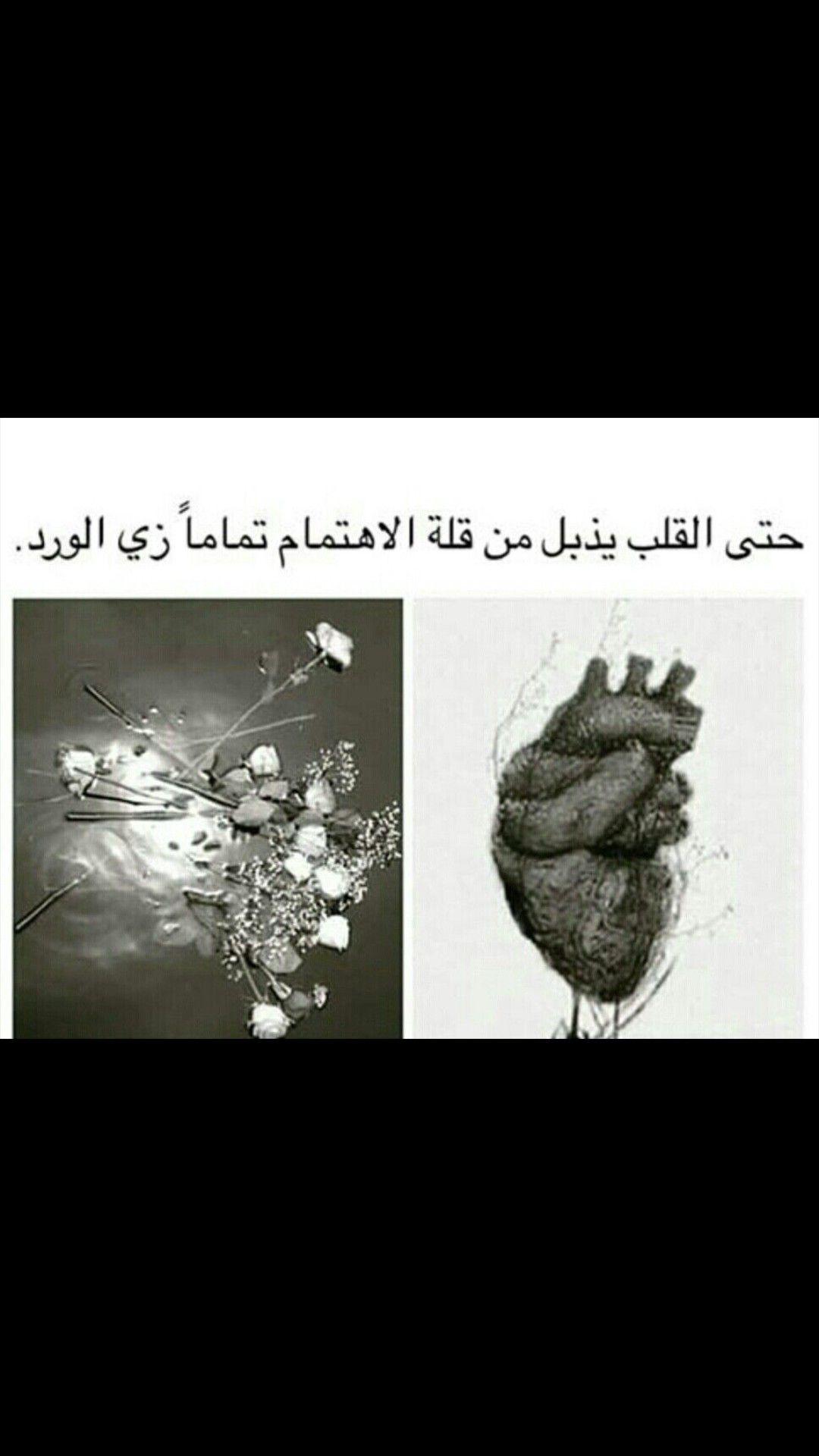Pin By Rim Chahine On كلام Arabic Words Arabic Quotes Qoutes