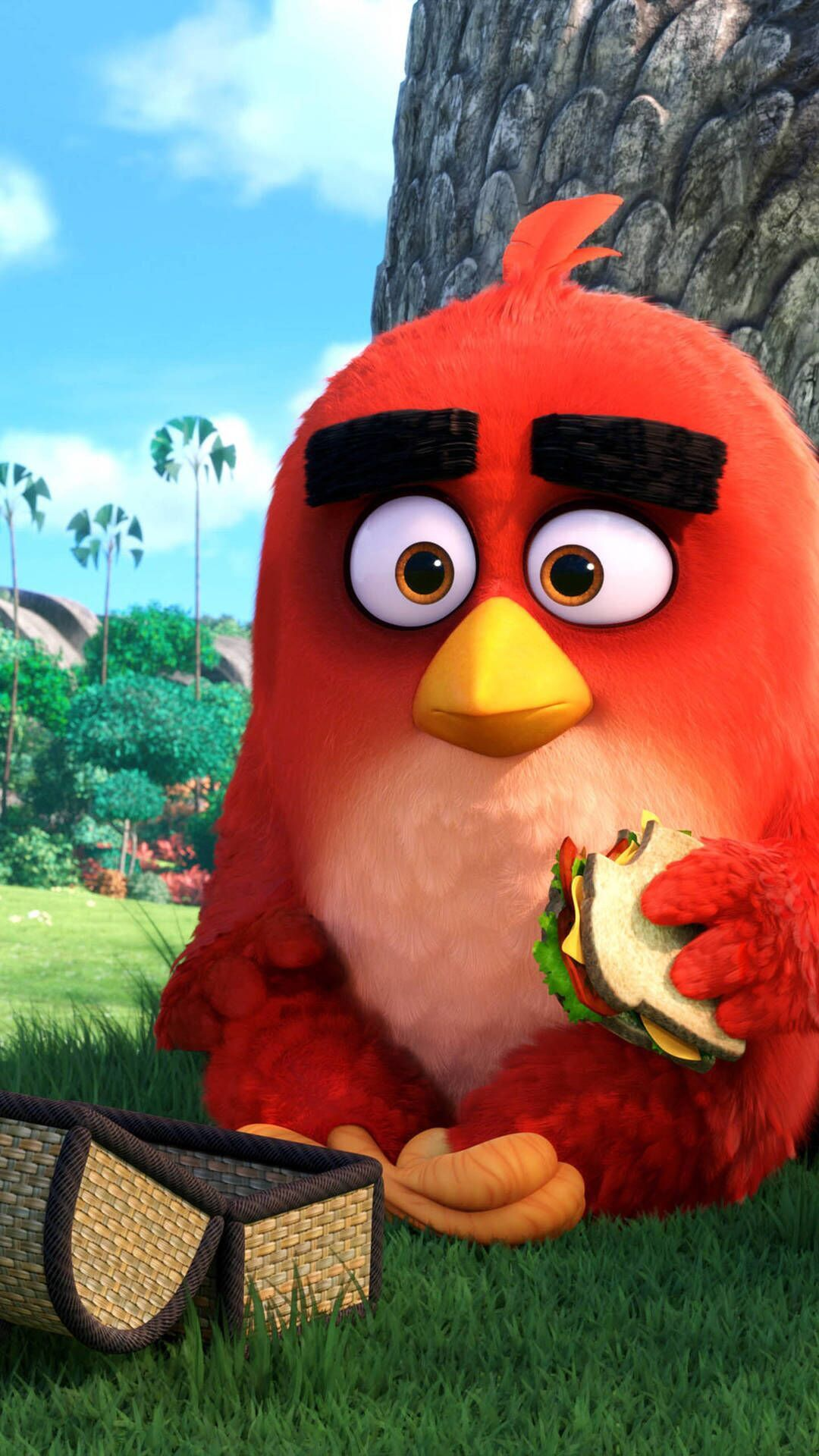 Angry Bird Angry Bird Pictures Angry Birds Movie Bird Wallpaper