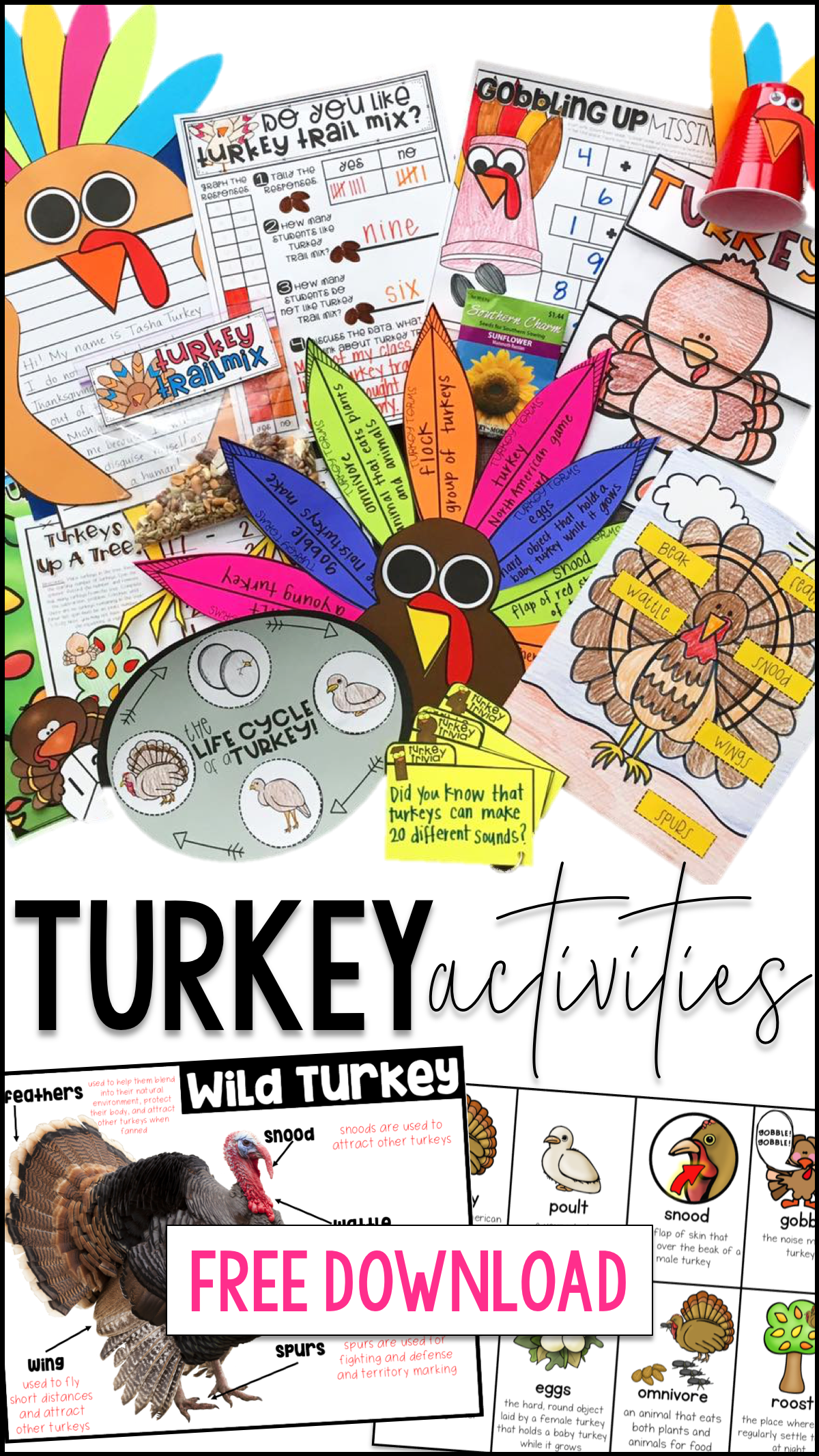 Are You Planning To Teach About Wild Turkeys This