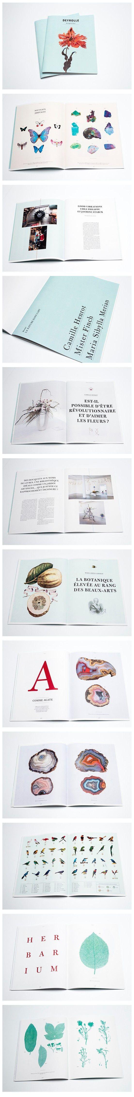 Deyrolle Magazine Editorial Design Layout Editorial Design Book And Magazine Design