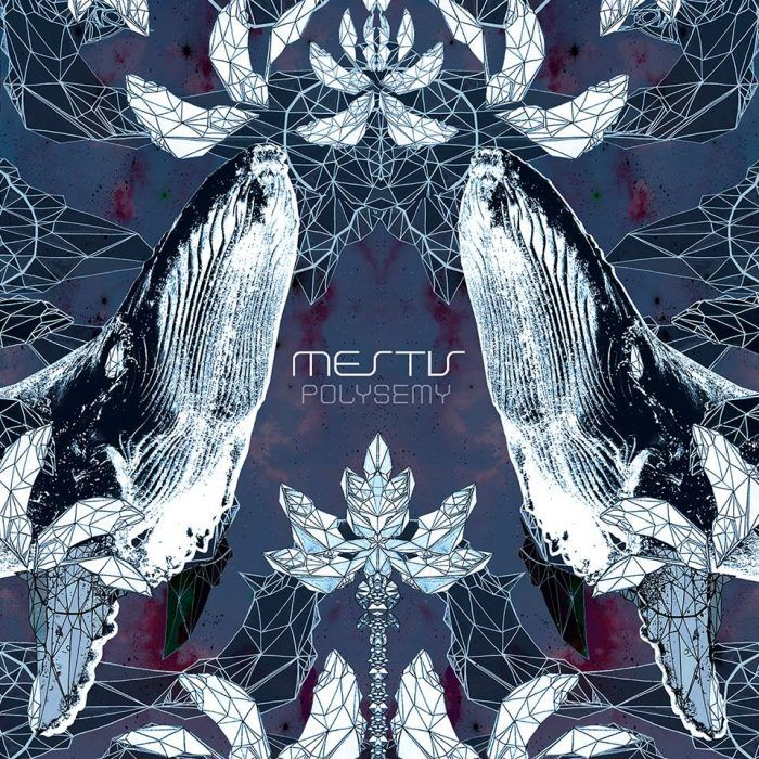 Mestis Polysemy Full Album Stream Music Album Art Album Art Metal Albums