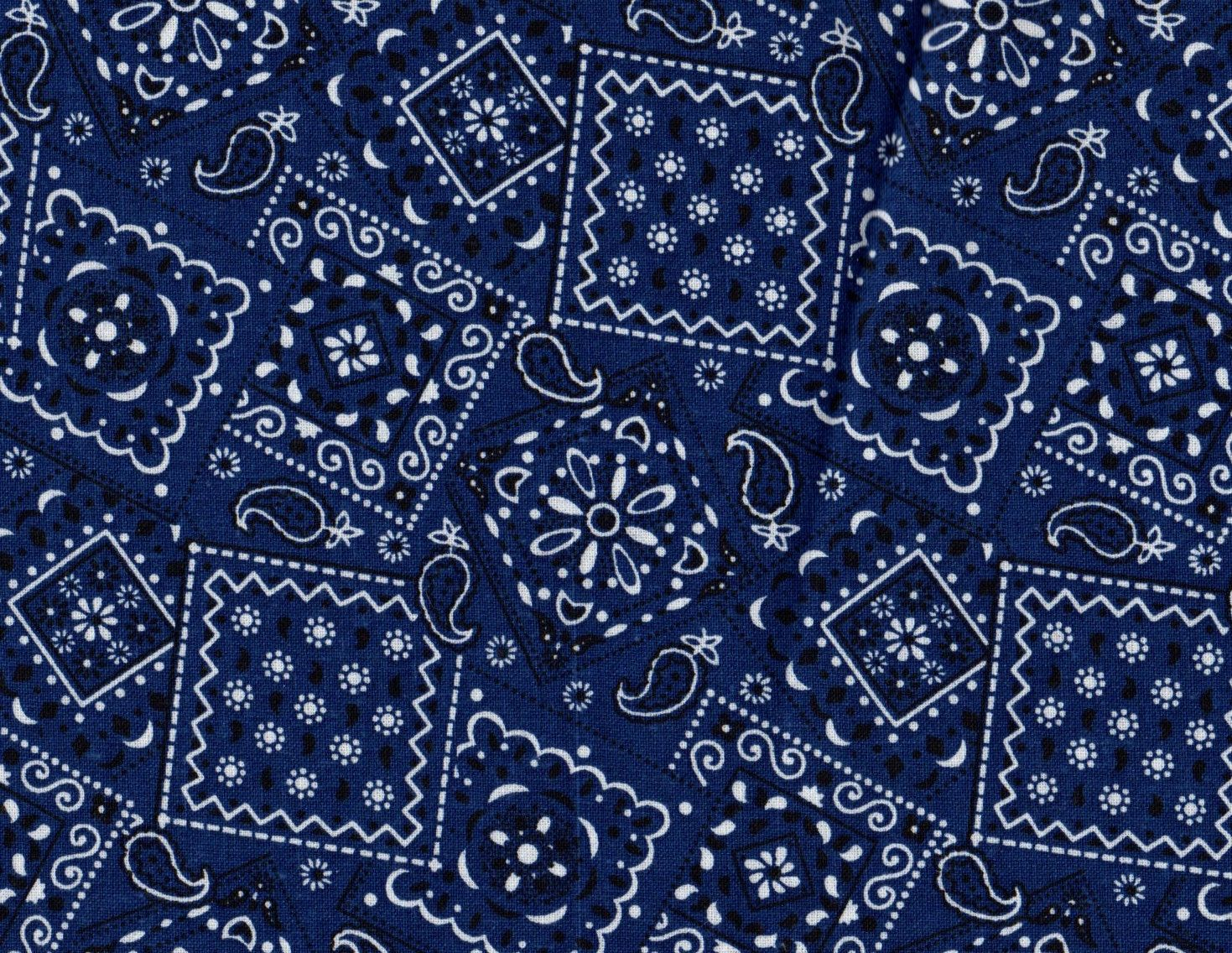 blue bandana wallpaper  Blue Bandana Wallpapers - WallpaperPulse | Beautiful Wallpapers ...