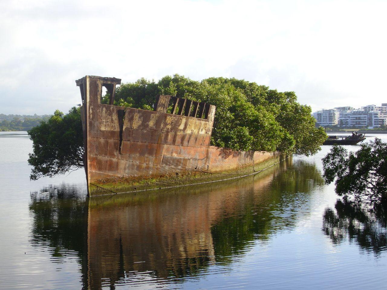 {SS Ayrfield} homebush bay, australia