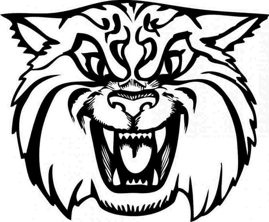 Best Printable Coloring Pages Of Wildcats 3333 Amazing