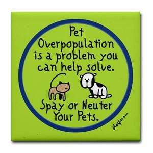 Pin By Lucinda Mccarthy On First Aid In 2020 Neuter Spay Pets