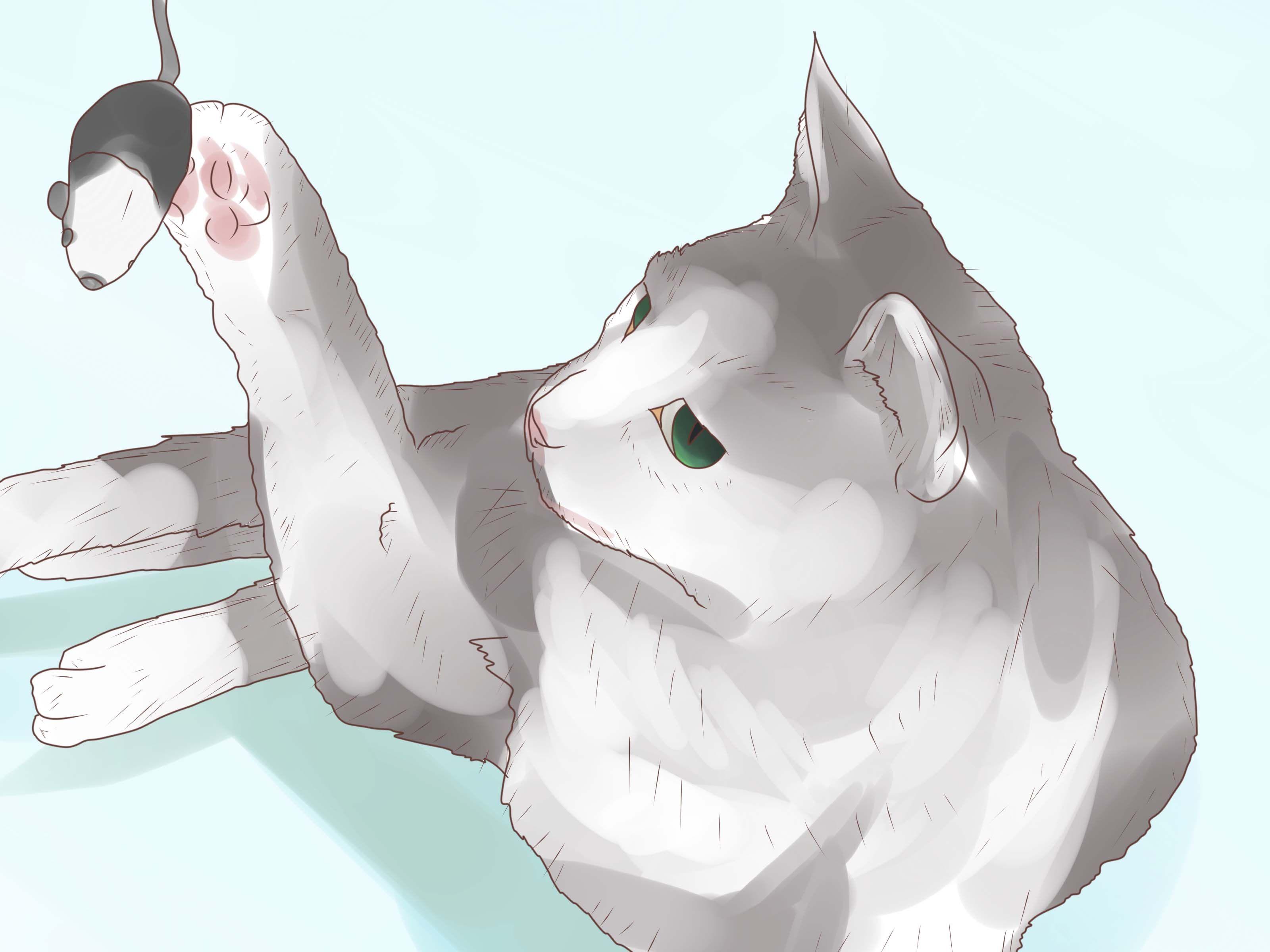 Prevent Cats from Eating Plants Feline leukemia, Cat