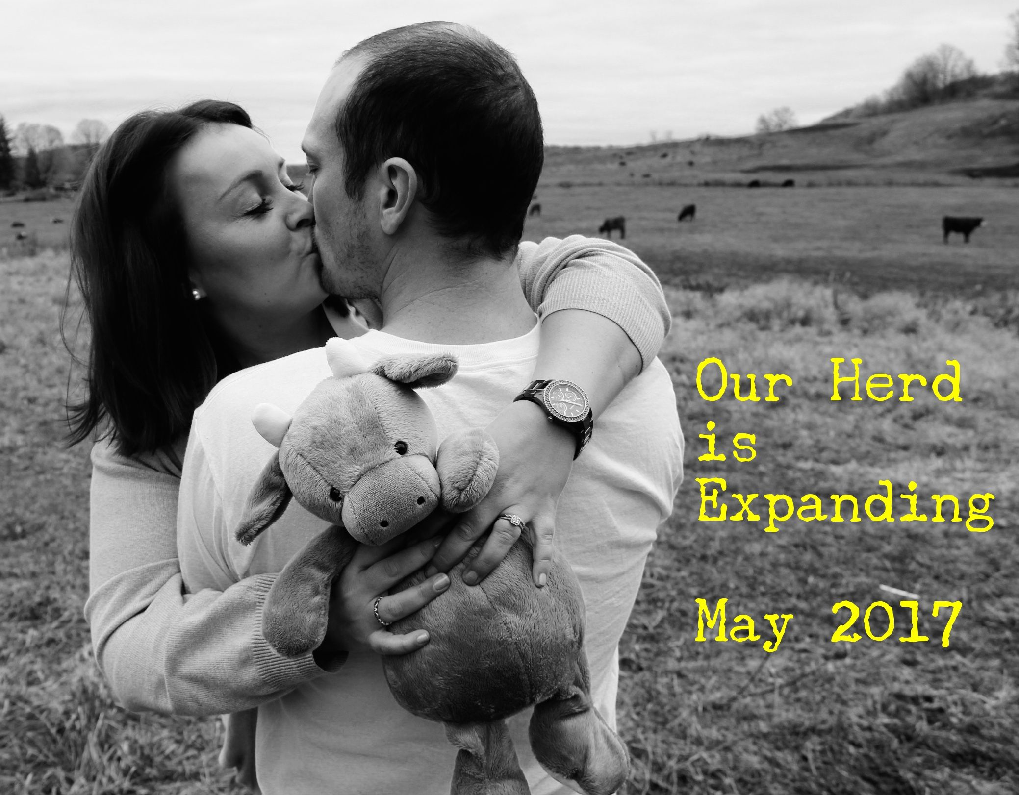 852cfccdd Pregnancy Announcement - Farm themed. | Babe | Country baby ...
