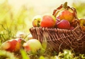 An apple a day can pay off significantly for your health in the long run