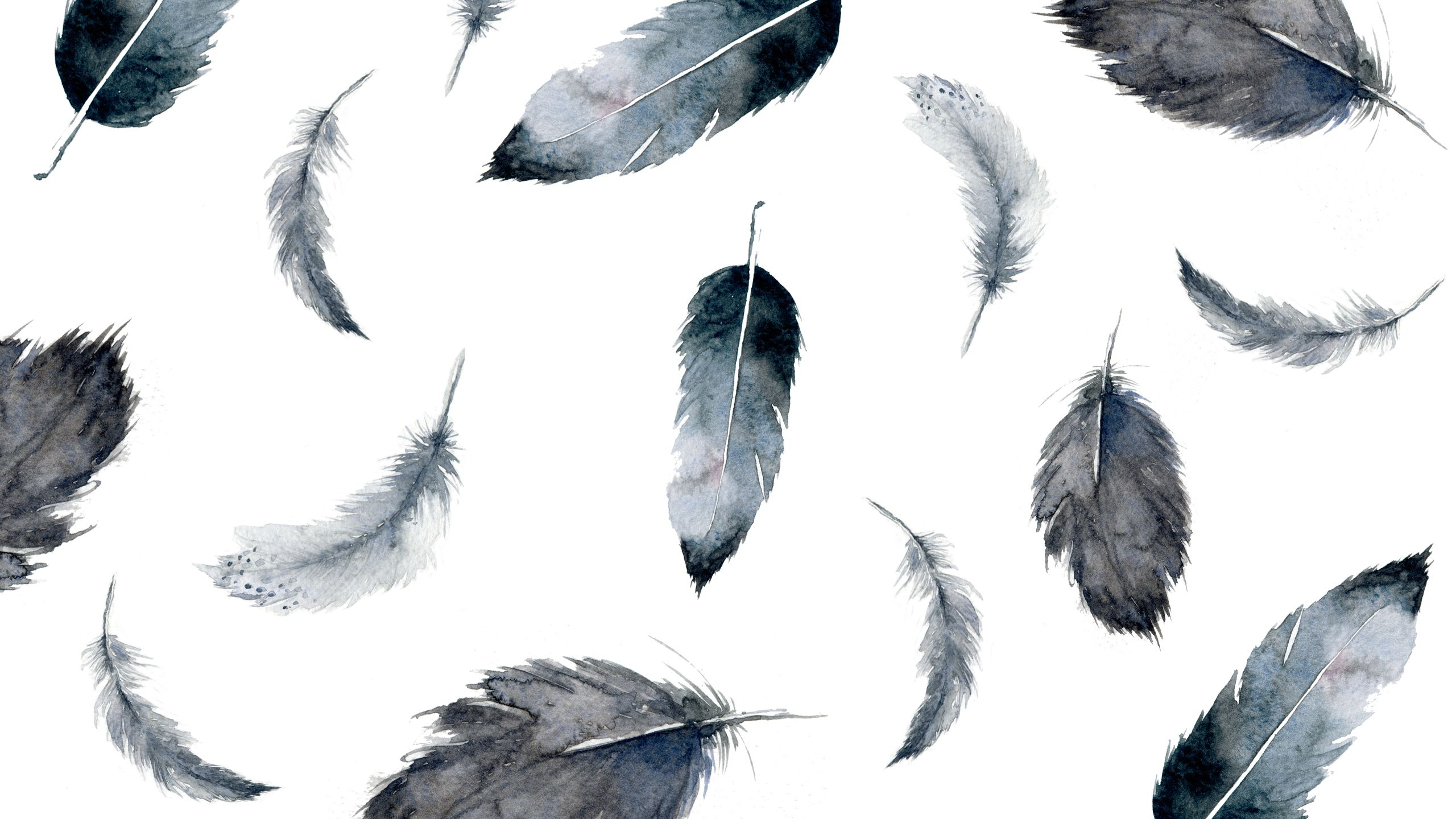 Feather Free wallpaper Simple Beyond simplebeyond