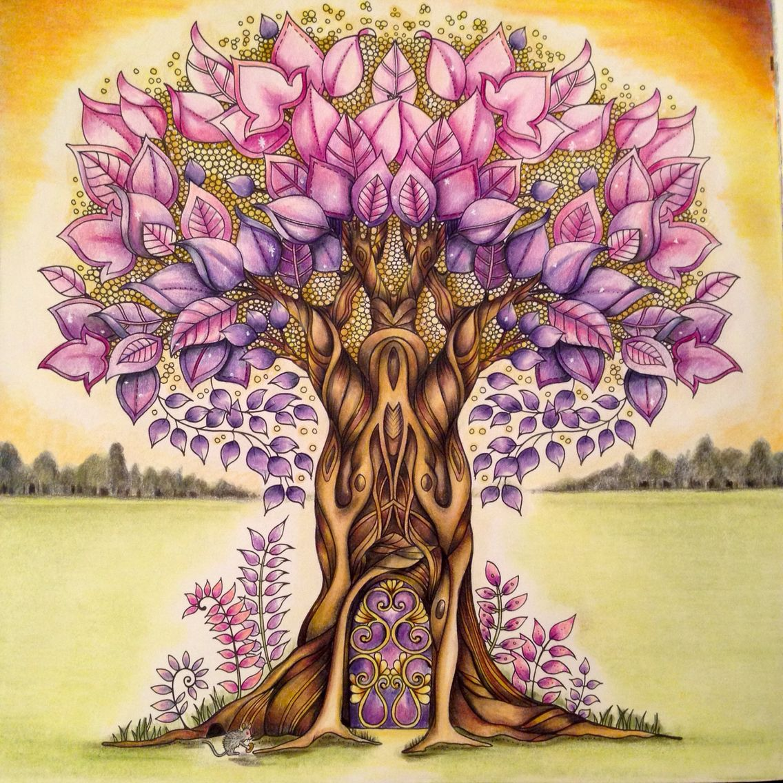 Enchanted Forest Johanna Basford. Used Polychromos Pencils Colouring Zenmalerei Malen
