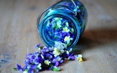 Как создать потрясающий цветочный запах в комнате - полезные советы