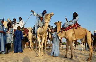 In the eleventh century, reforming Muslim Berbers called Almoravids of the western Sahara, controlled lands extending from the southern savanna to Spain.