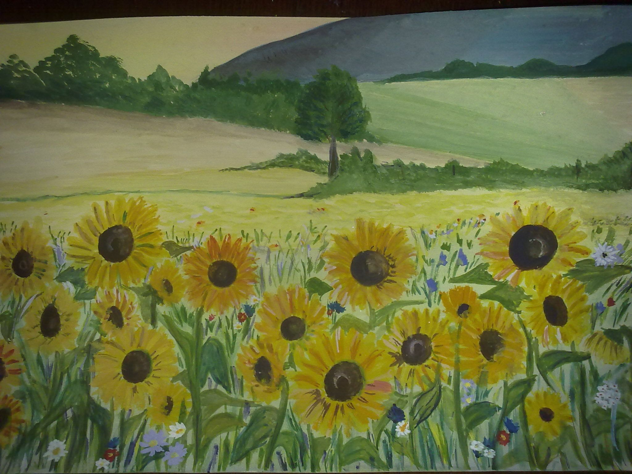 Sunflowers my drawings pinterest sunflowers and drawings