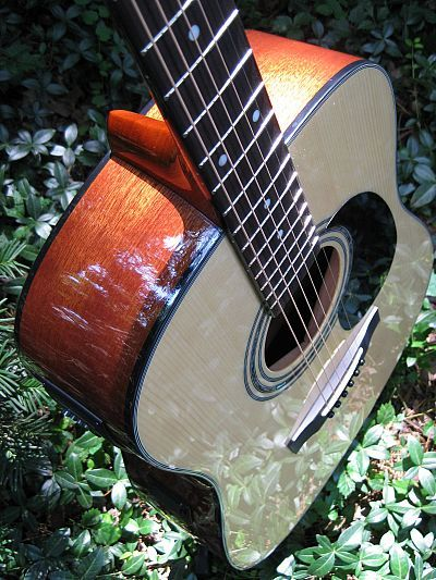 Zager Guitars Is A Wonderful Musical Instrument The Zager Guitars Produces Acoustic Tunes It Has User Friendly Features A Guitar Reviews Guitar Guitar Images