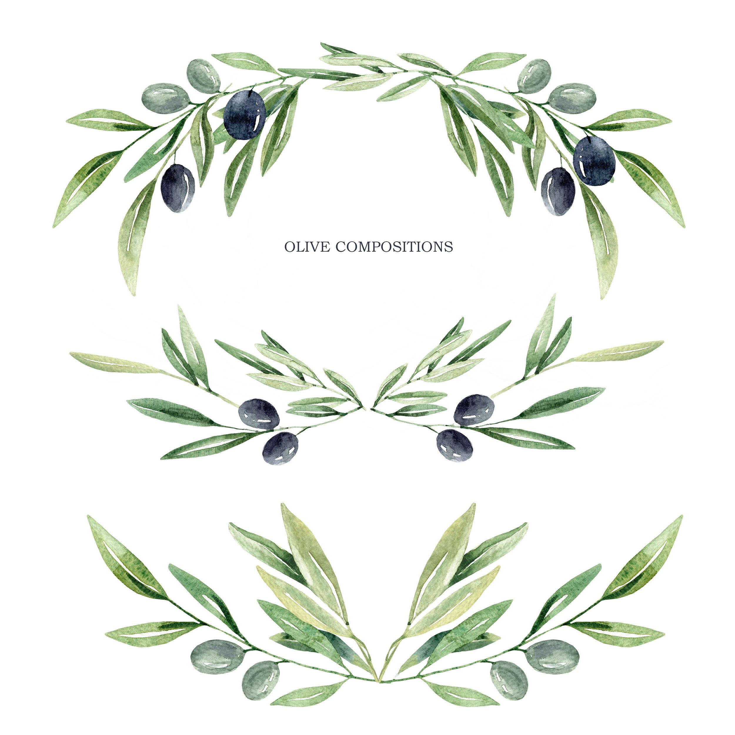 Watercolor Olive Branch Leaves Clipart Watercolor Leaves Etsy Floral Wreath Watercolor Leaf Clipart Olive Branch Tattoo