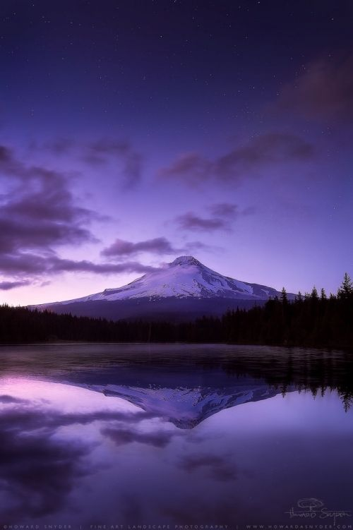 30 Deep and Rich Purple Colored Photographs « Stockvault.net Blog – Design and Photography