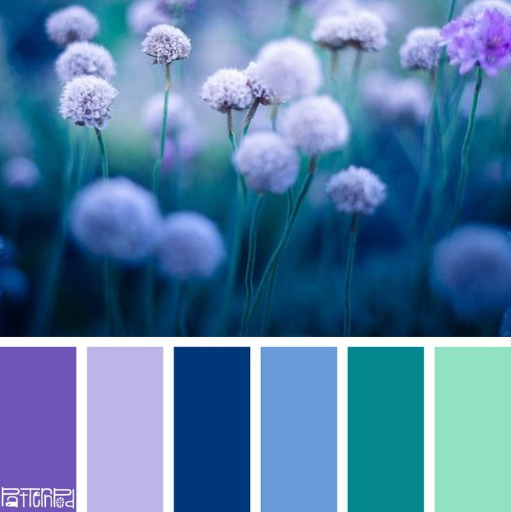 Green Wall Color Scheme And Purple Beds In Small Teenage: Color Schemes, Colour