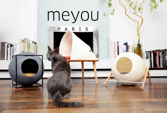 Design Katzenmöbel besonders Images der Deddbdffccace Jpg