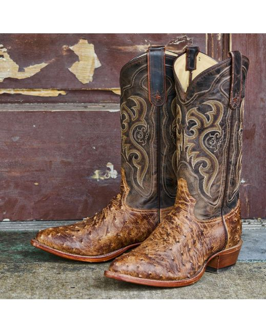5d33e100230 Tony Lama Men s Chocolate Vintage Full Quill Ostrich Boot  http   www.countryoutfitter