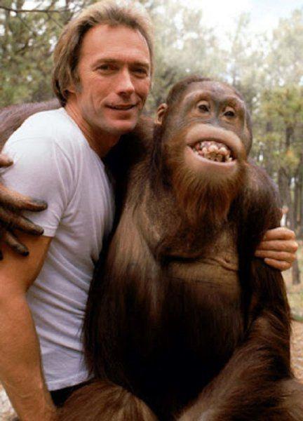 """La mejor """"saga"""" de Clint Eastwood 99d72295024ee6fe506b3d2a1ffd929f"""