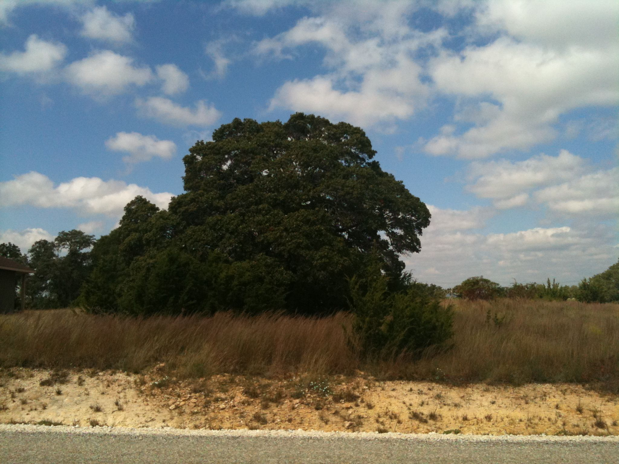 Lot for sale in Rockin J Ranch Texas hill country, Lots