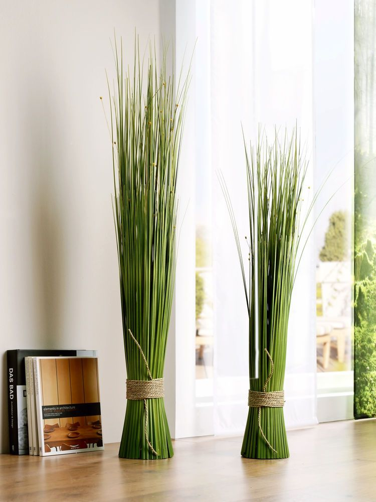Plante verte tendance d corative fcconsult feng shui Plante decorative