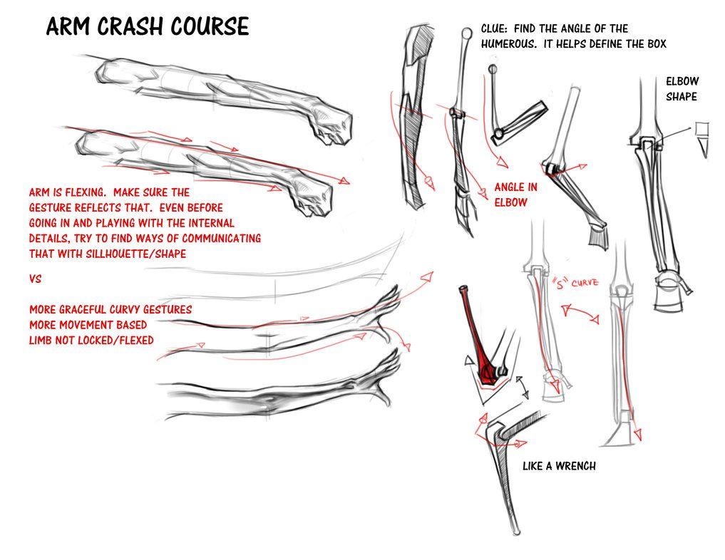 Arm Crash Course By Funkymonkey1945 On Deviantart Art Tuts