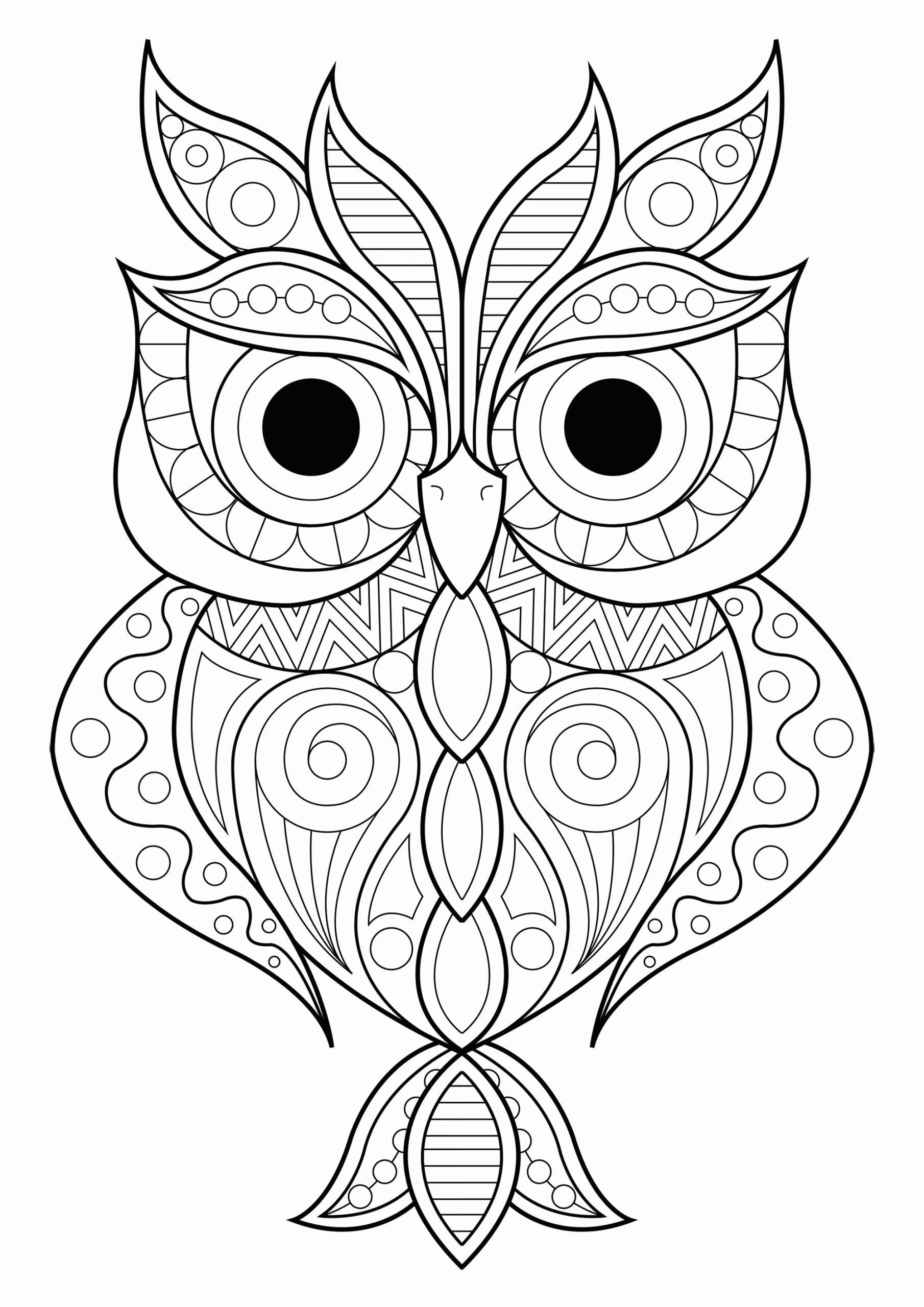 Pin On Colorir Coloring Pages Book Ideas