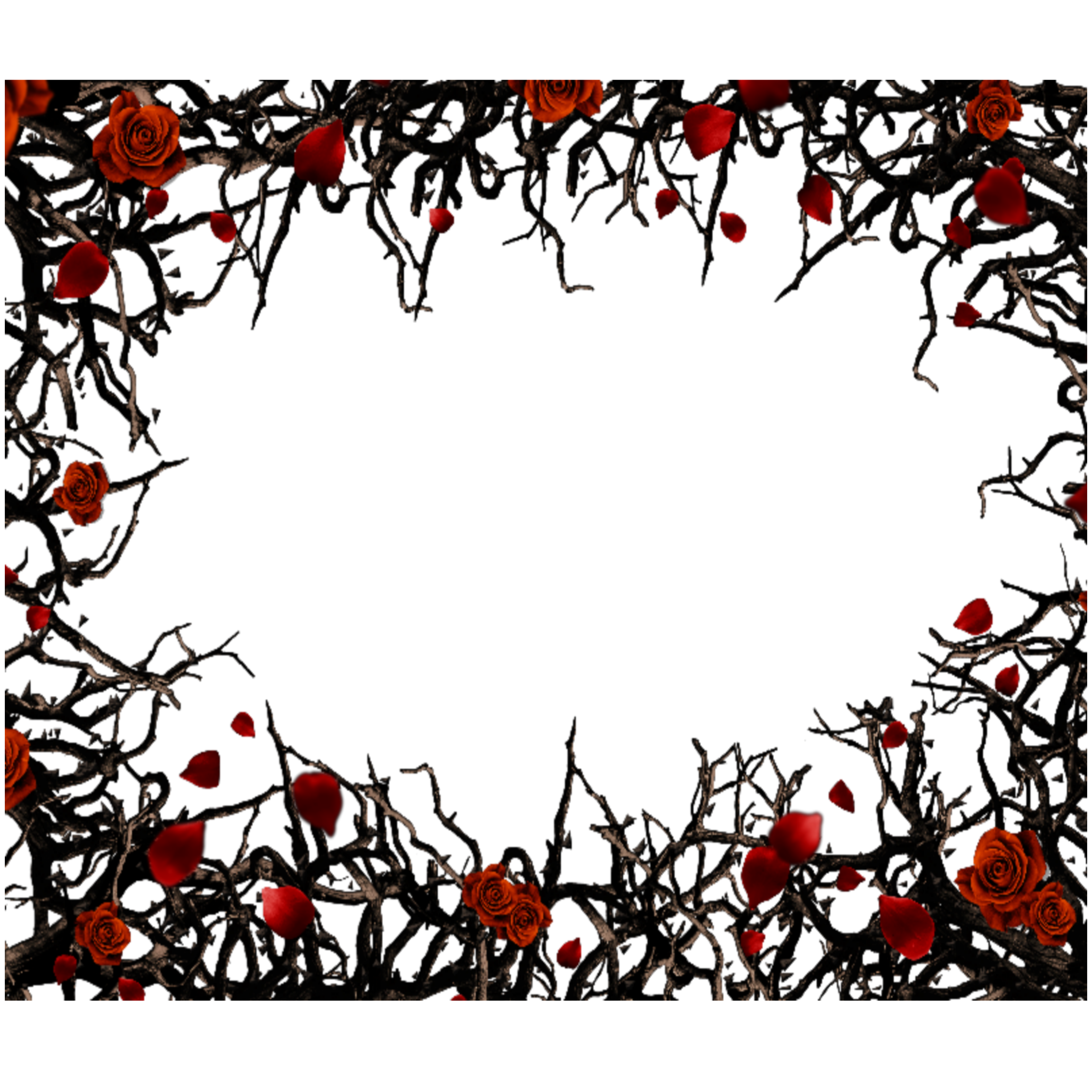 Freetoedit Mq Red Black Roses Gothic Frame Frames Border Borders Remixit Gothic Pictures Framed Tattoo Book Of Shadows