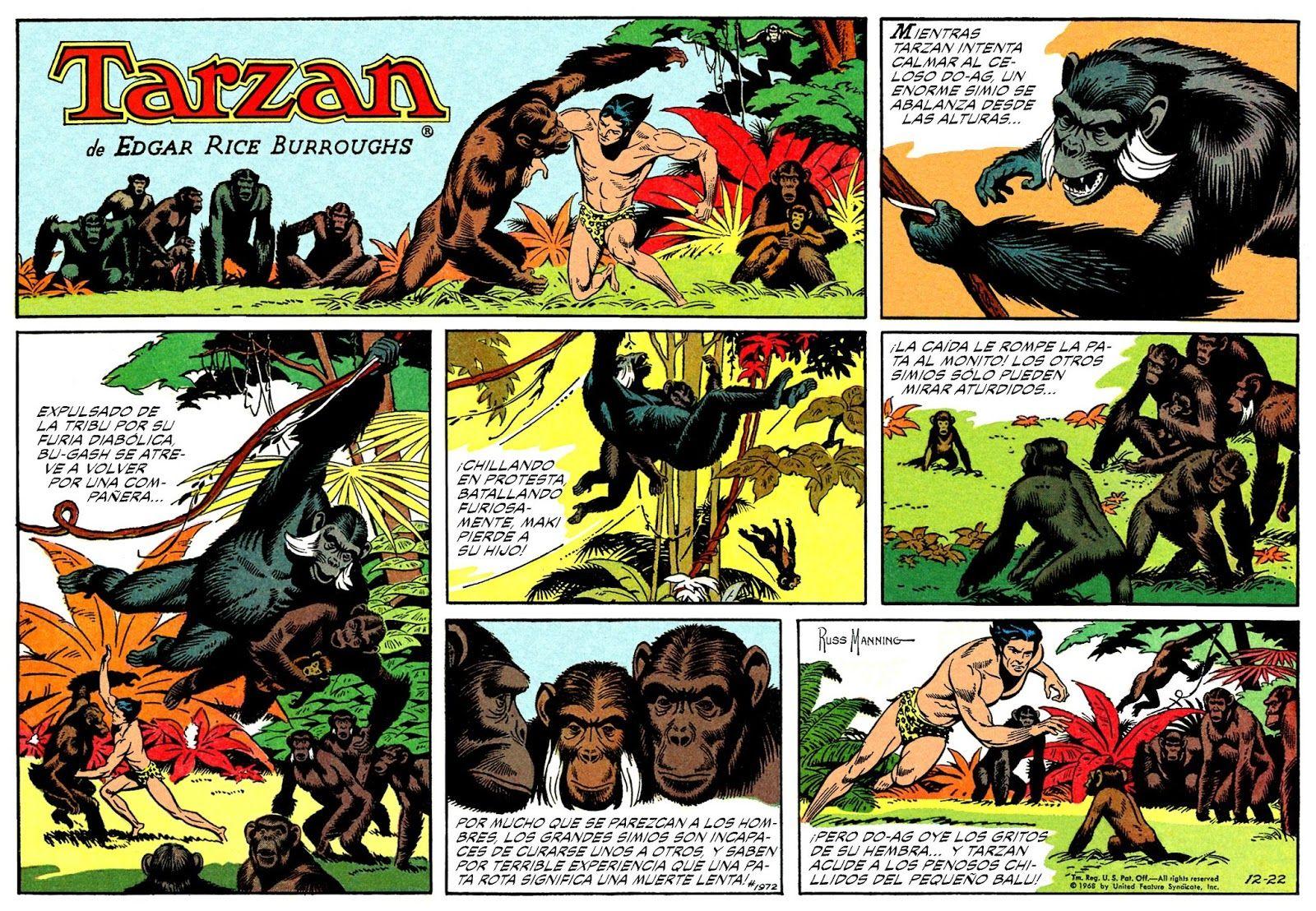 Tarzan Angebot 99 Euro