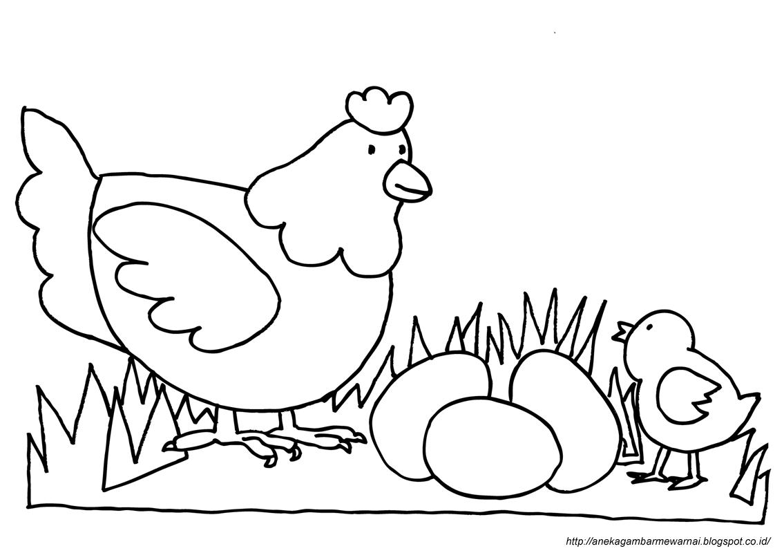 37 Mewarnai Gambar Anak Ayam Menetas Terbaru Lingkar Png