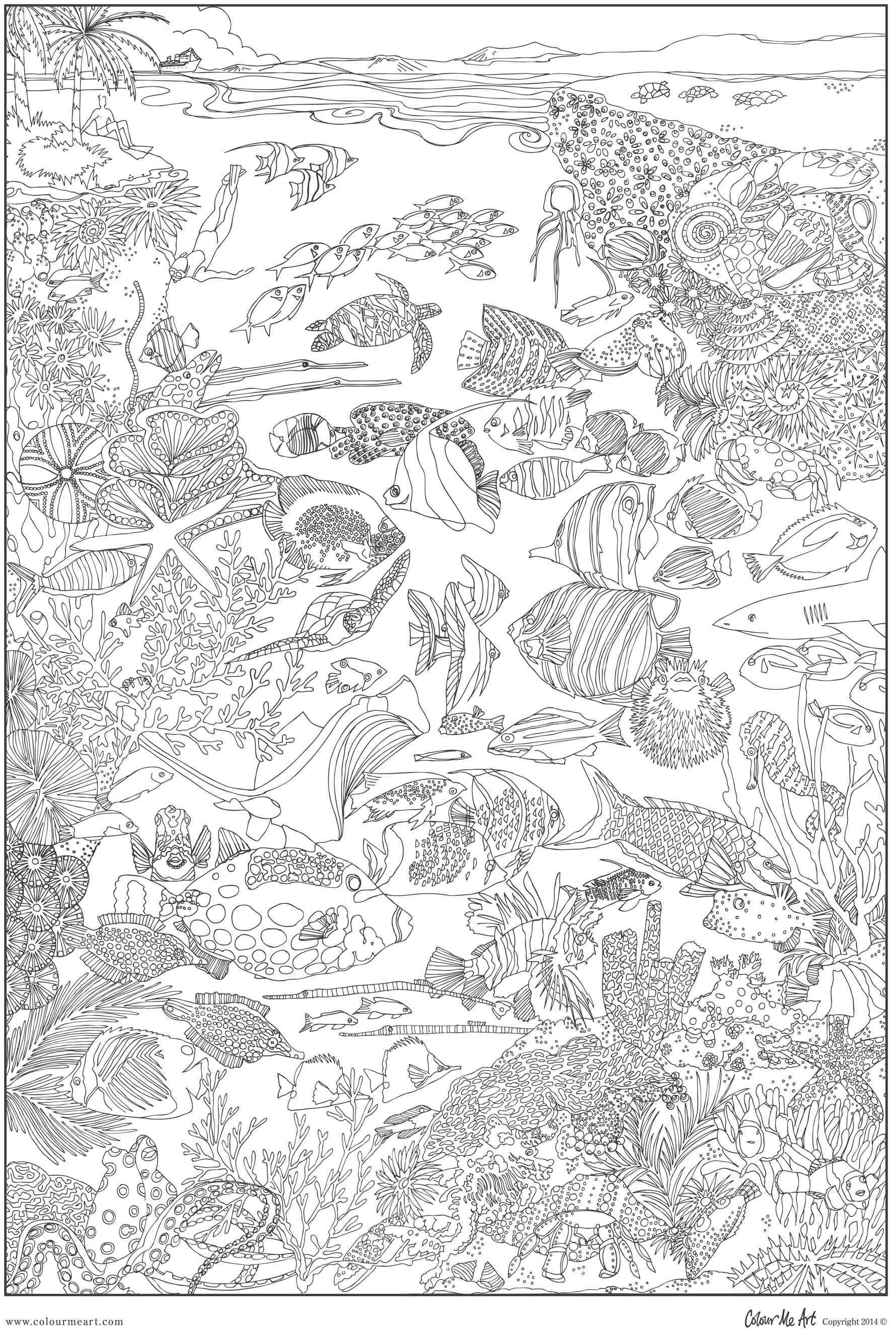 Great barrier reef coloring pages bing images aquatic for Coloring pages of coral reefs