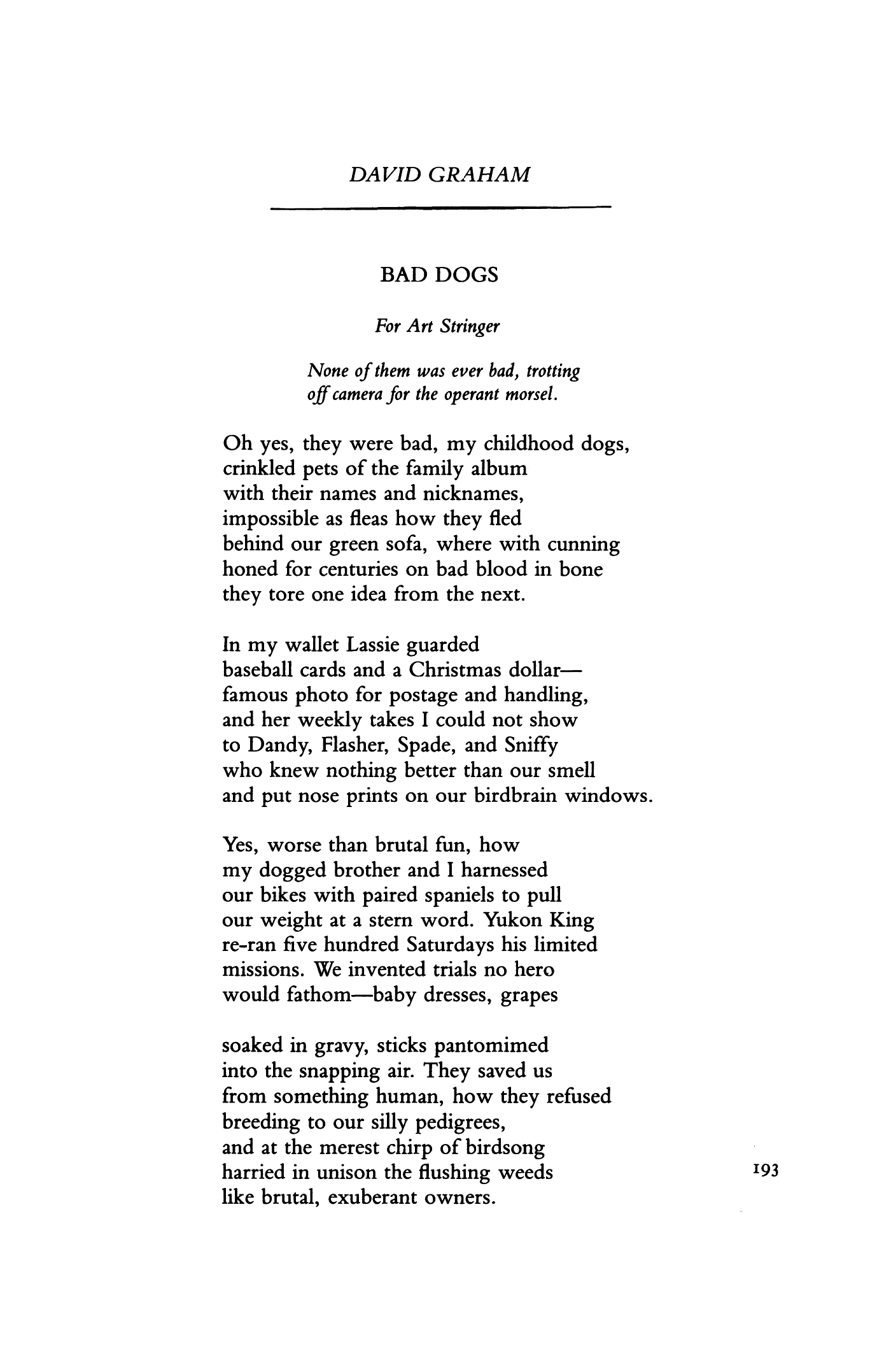 Bad Dogs By David M Graham