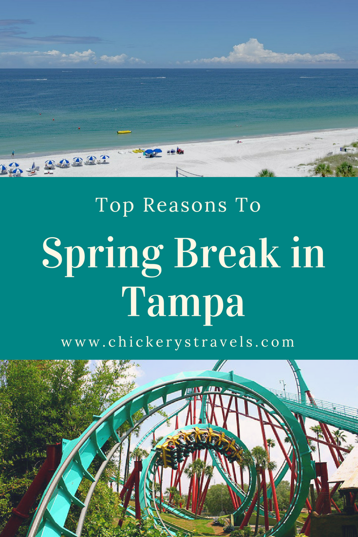 Why We Love Tampa Spring Break Vacations Top Spring Break Destinations Best Spring Break Destinations