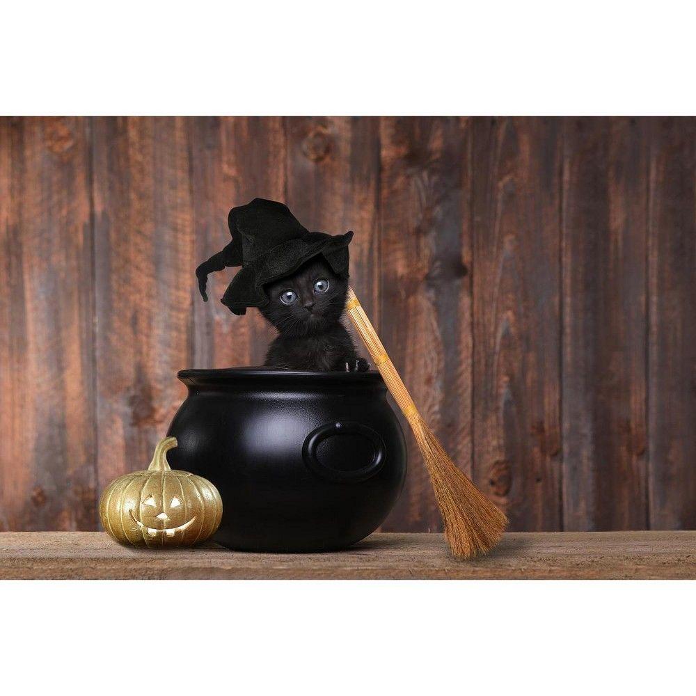 Toynk Spooky Kitty Halloween Black Cat 1000 Piece Jigsaw Puzzle