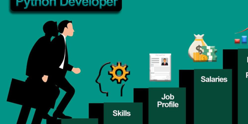 Python Developer Jobs
