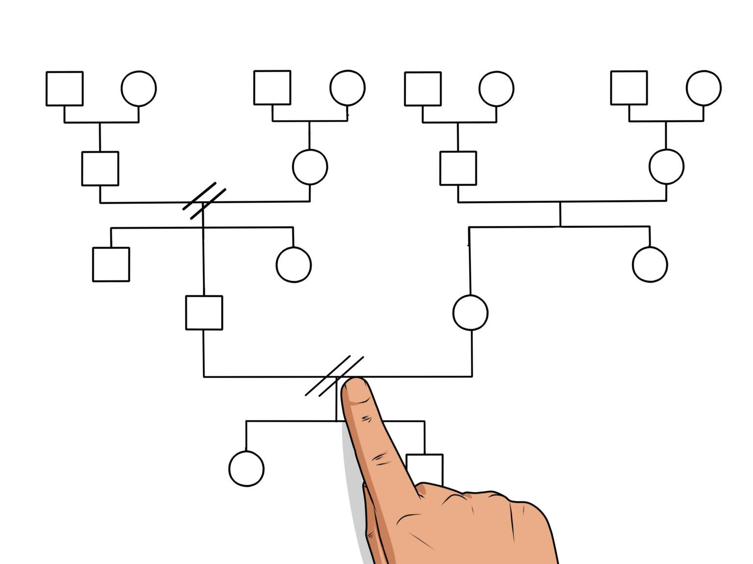 How To Make A Genogram 14 Steps With Pictures Wikihow Intended For Genogram Template For Word Genogram Template Family Genogram Best Templates