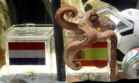 Remember Paul Paul The Octopus Predicted That Spain Would Beat Holland In The World Cup Paul The Octopus Octopus Just Amazing
