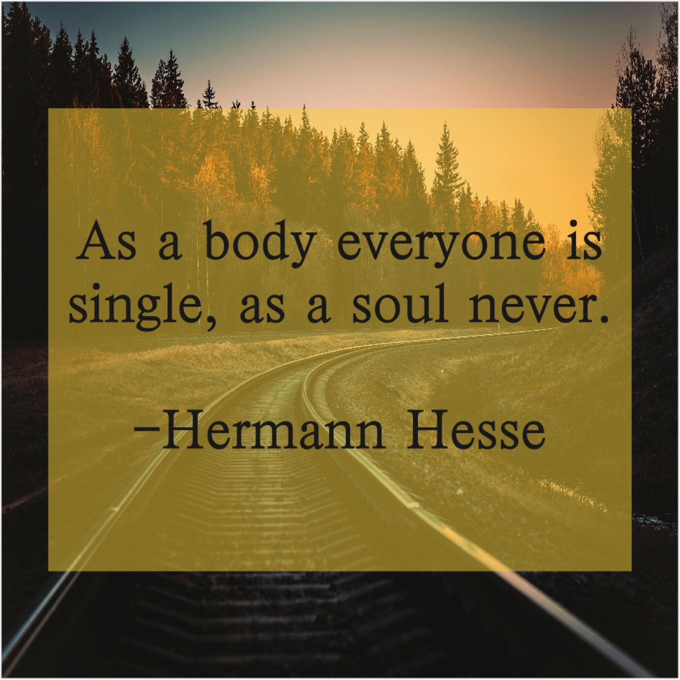 Hermann Hesse As A Body Everyone Is As A Body Everyone Is Single