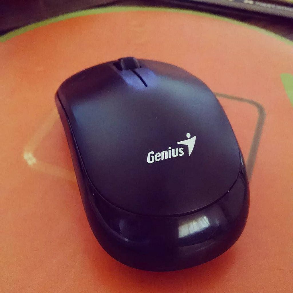 Little Things That Make Me So Very Happy New Wireless Genius Mouse