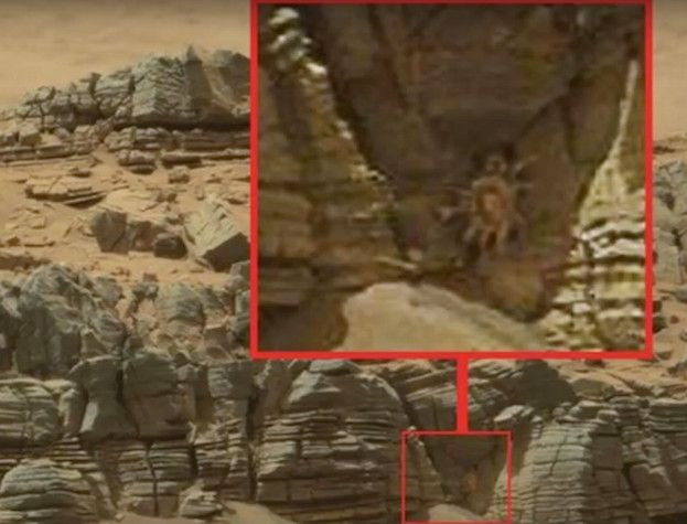 Alien Crab Found On Mars By NASA Rover, Aug 2015