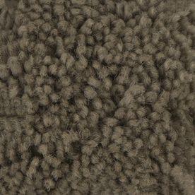 Stainmaster Baxter Iii Petprotect Buddy Plush Carpet Sample S623714buddy-Uddy