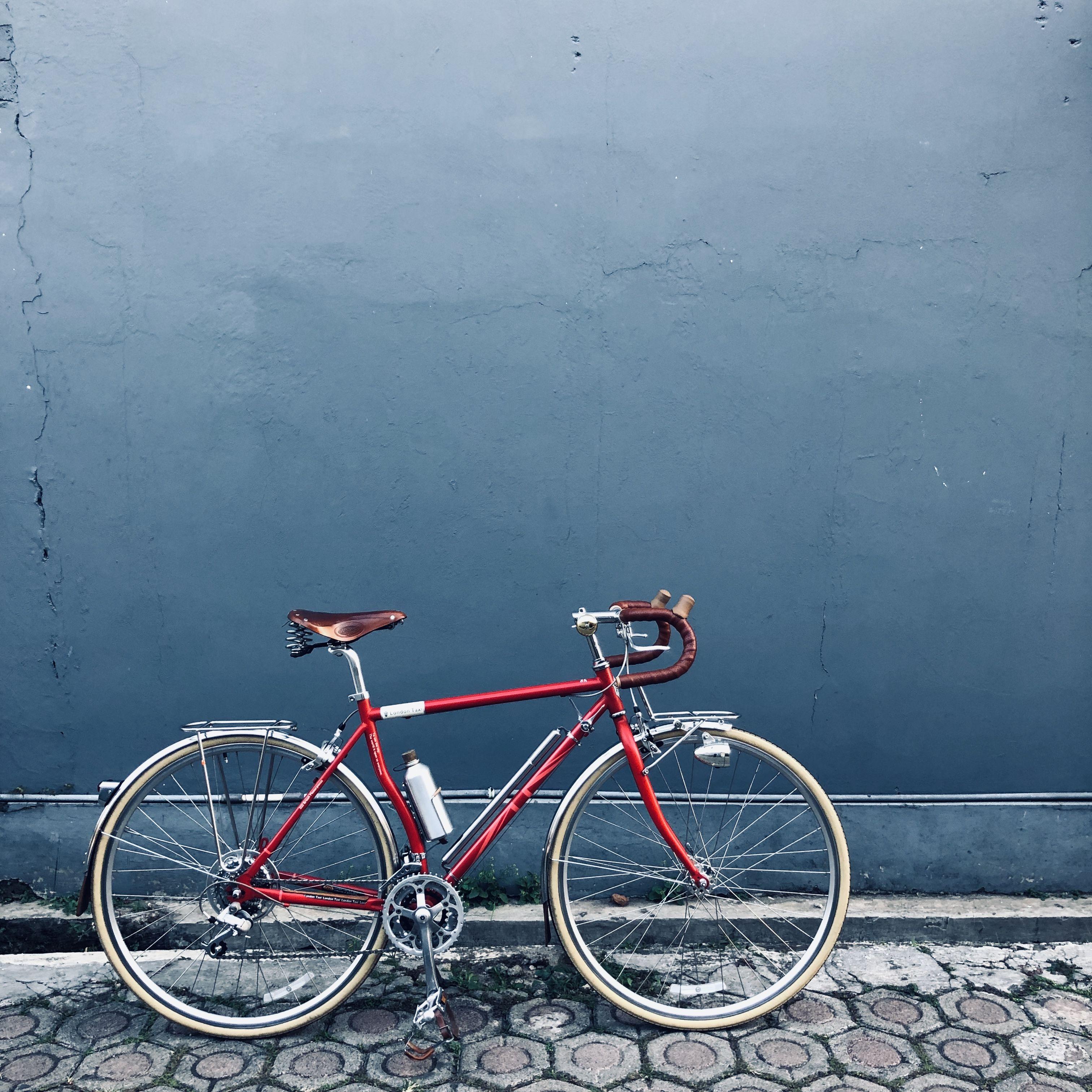 London Taxi Folding Bike Review