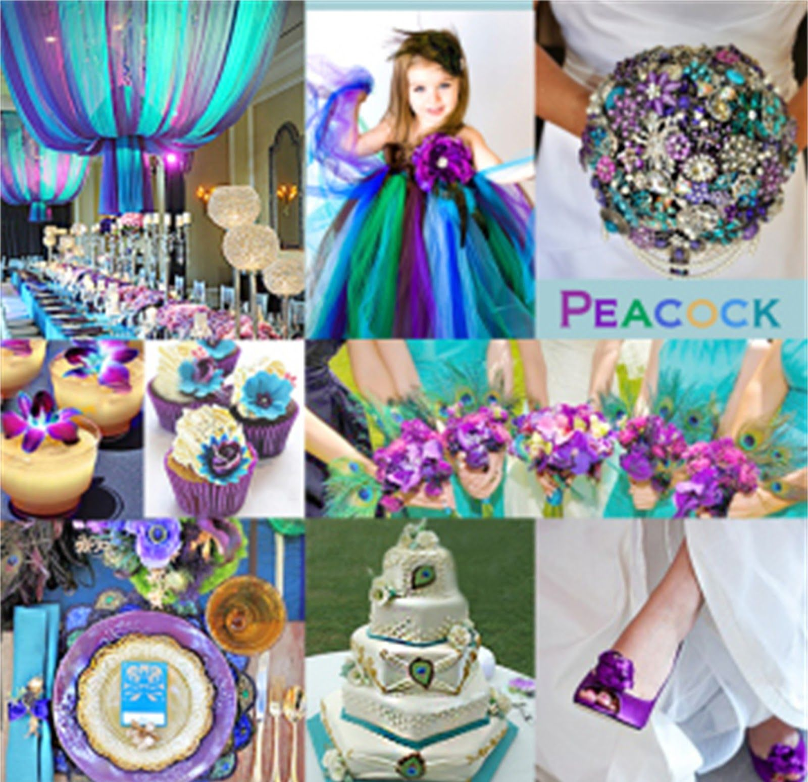 Angee S Eventions Peacock Themed Wedding Wedding Colors Purple Peacock Wedding Theme Wedding Color Combinations