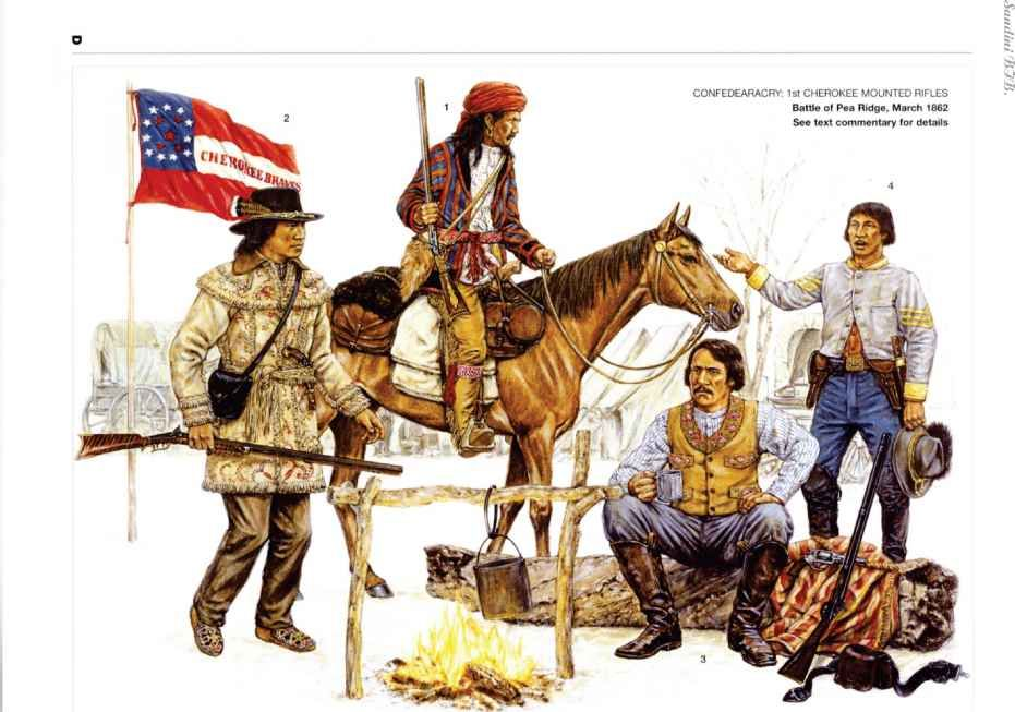Image result for confederate cherokee